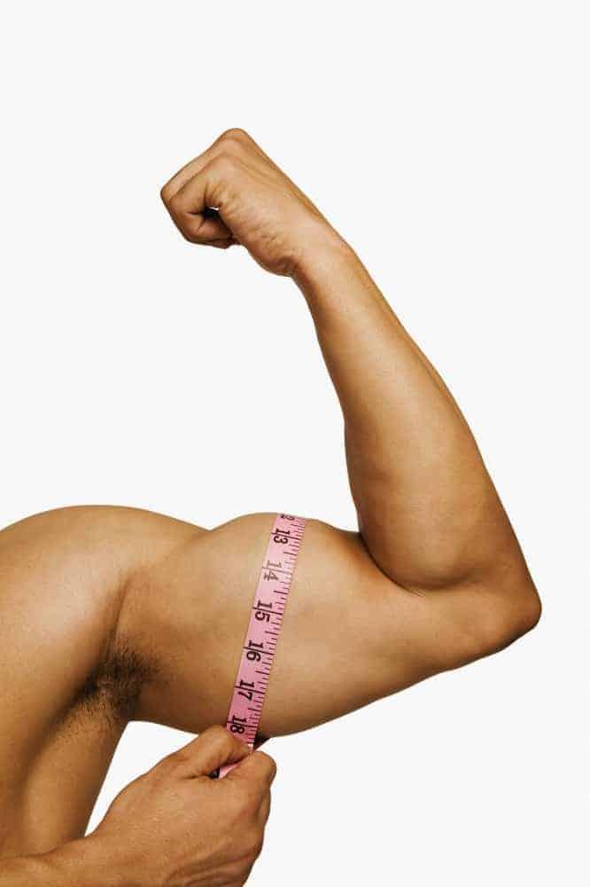 biceps-circuit